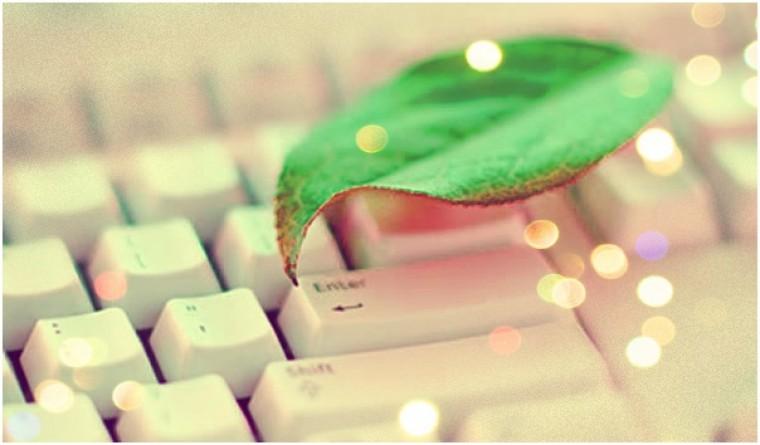 Egészséges, zöld iroda: 10 tipp amivel anyagilag is jól jársz