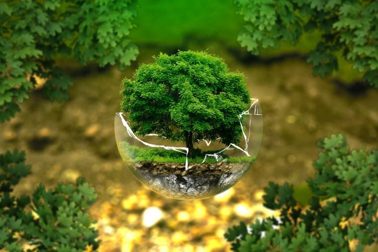 A fenntartható fejlődés bizottsága elfogadta a harmadik Nemzeti Környezetvédelmi Program jelentését