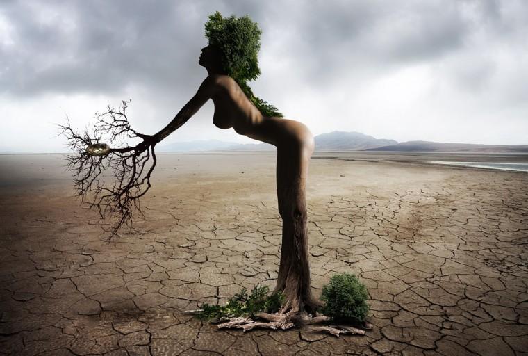 Prioritást kap a klímaváltozáshoz való alkalmazkodás a KEHOP-ban