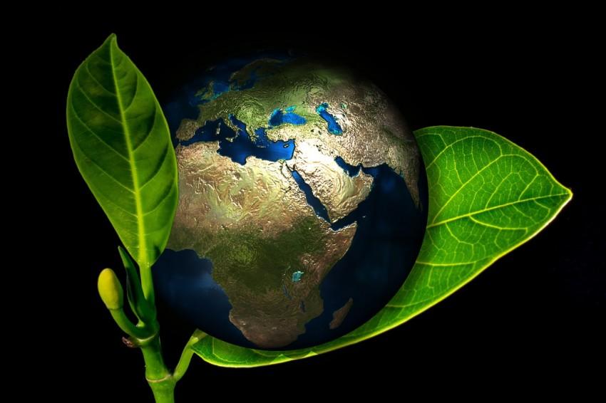 A 2015-ös év TOP3 fenntartható ellátási lánc trendjei.
