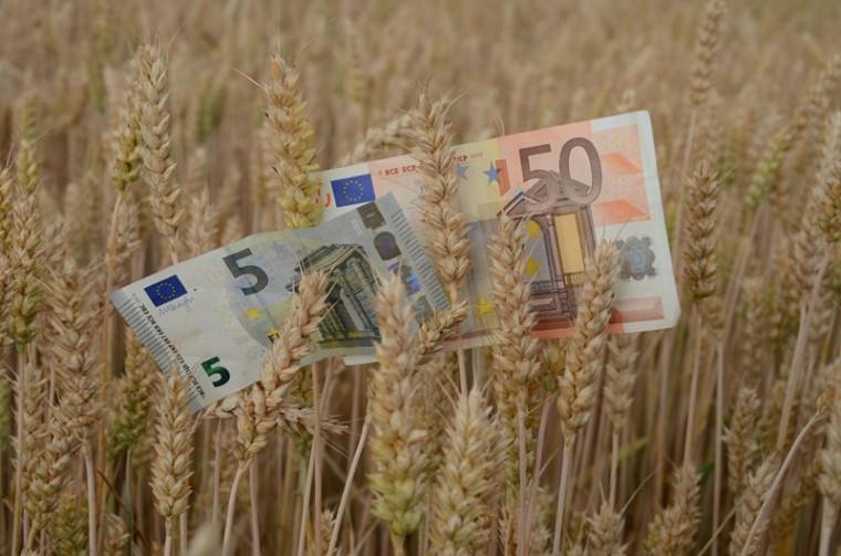 Tizenkétmilliónyi okotok van gazdálkodni!